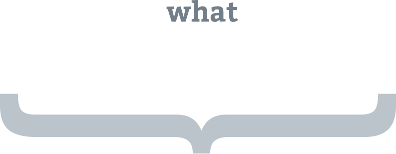 what-we-do